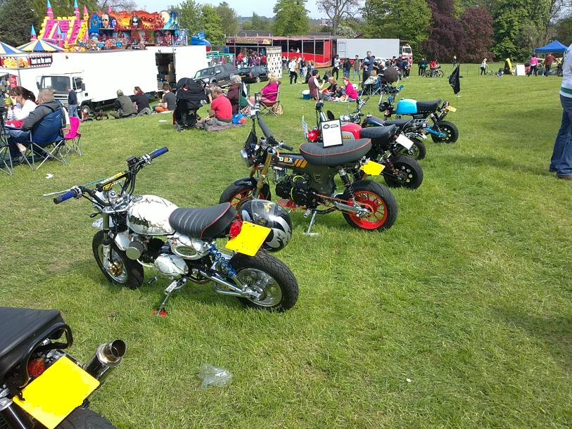 Six Monkey Bikes in the Show