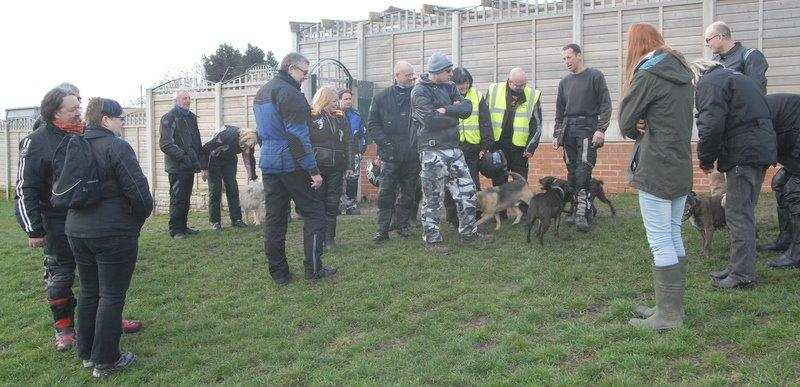 Meeting the dogs at Whitehall