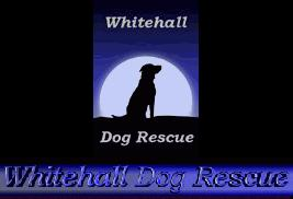 Whitehall Dog Rescue